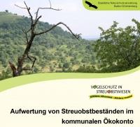 Aufwertung von Streuobstbeständen im kommunalen Öko-Konto