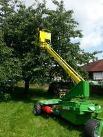 Baumpfleger Lengert